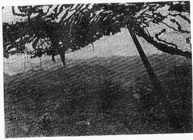 [Opérations de guerre] GUERRE DE CORÉE - Tome 1 - Page 4 100010