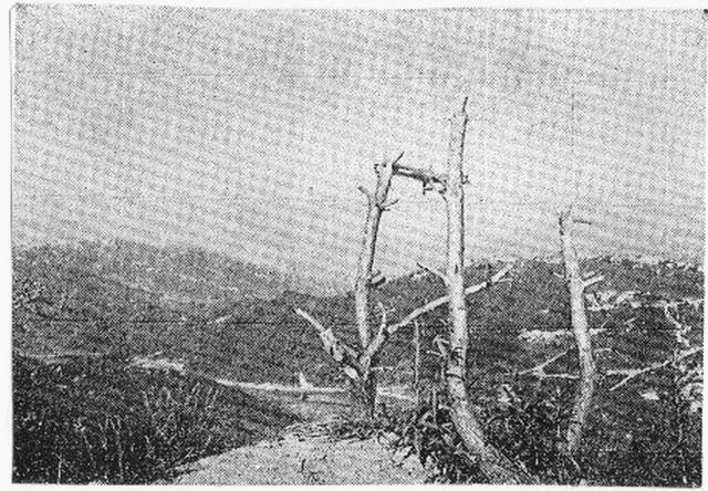 [Opérations de guerre] GUERRE DE CORÉE - Tome 1 - Page 4 100110