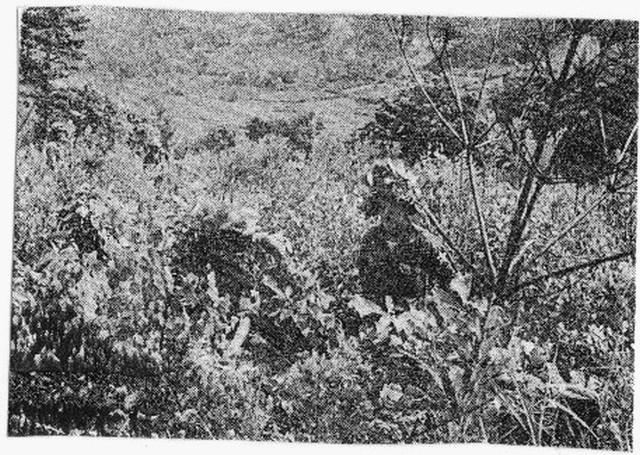 [Opérations de guerre] GUERRE DE CORÉE - Tome 1 - Page 4 100710