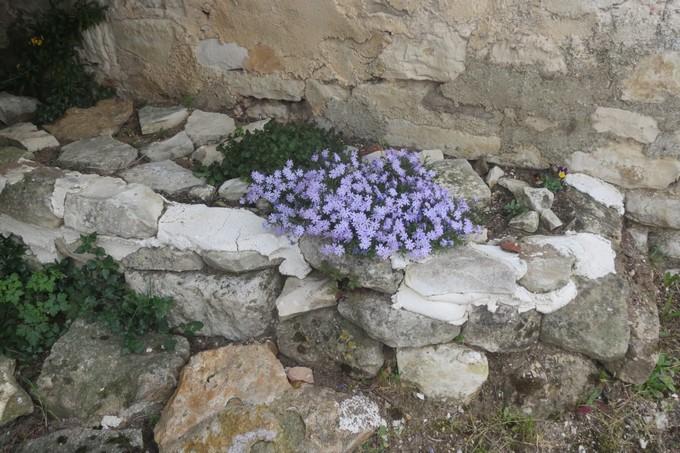 un dimanche de mai ,un beau petit village  pour un pique nique charentais Img_2915