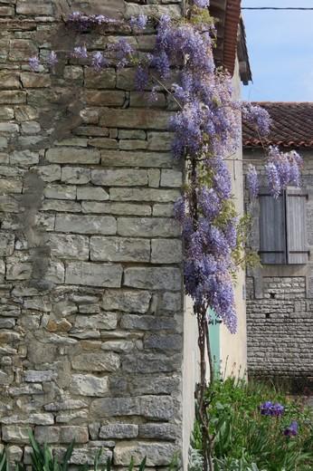 un dimanche de mai ,un beau petit village  pour un pique nique charentais Img_2936