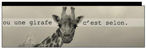 [All] Créations libres ou comment j'ai l'crayon qui gratte Girafe10