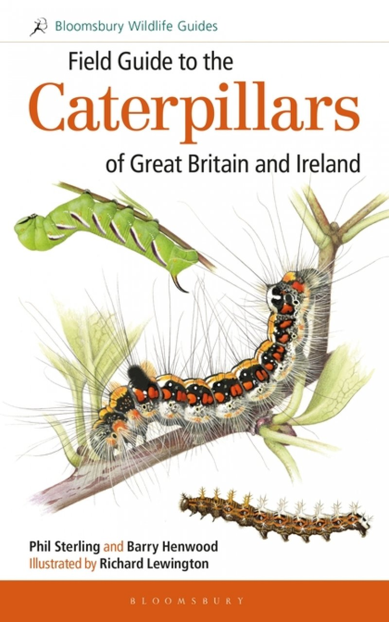 Field Guide to the Caterpillars of Great Britain and Ireland - NOUVEAU 24826711