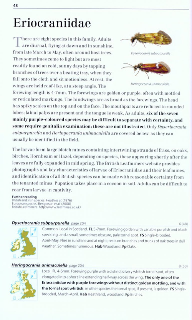 Field Guide to the Micro-Moths of Great Britain and Ireland Microm14