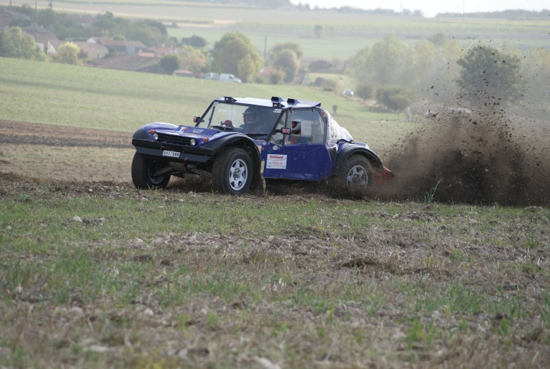 buggy - Request for Photo's Purple Buggy 53 _14010