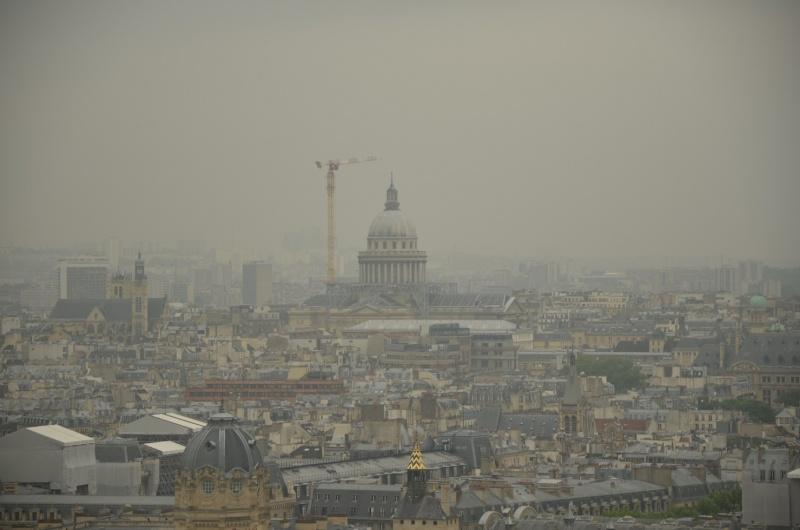 une petite grue très haute à Paris. Dsc_1510