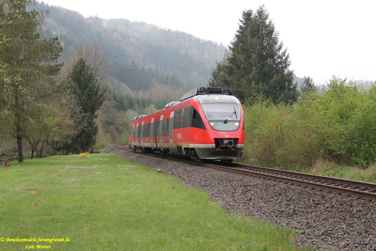 Quelques photos faites ce matin à Dauffenbach (D)  Img_2215