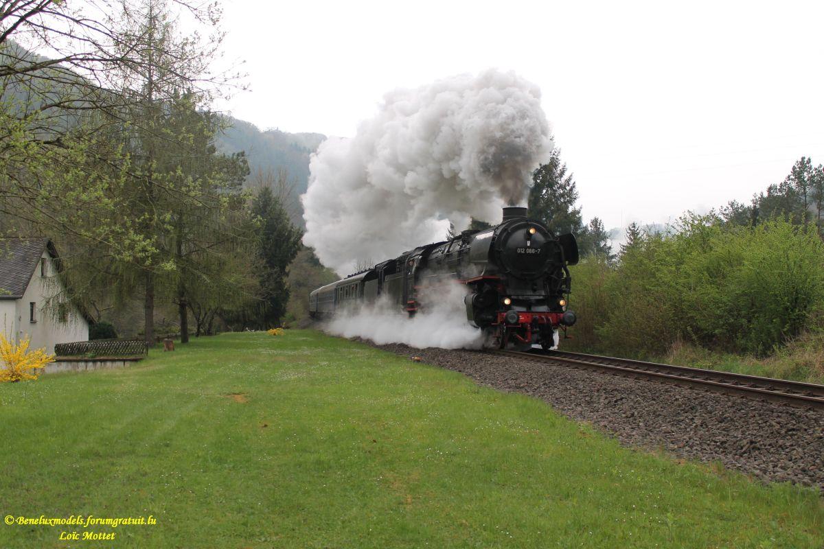 Quelques photos faites ce matin à Dauffenbach (D)  Img_2216