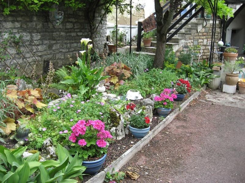 bonjour de mon jardin sous la chaleur Img_5819