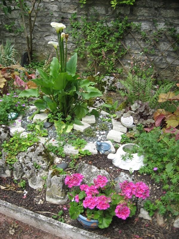 bonjour de mon jardin sous la chaleur Img_5820
