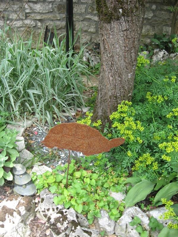 bonjour de mon jardin sous la chaleur Img_5821