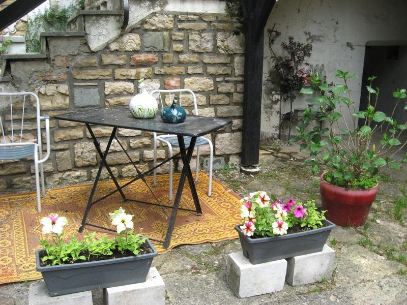 bonjour de mon jardin sous la chaleur Img_5822
