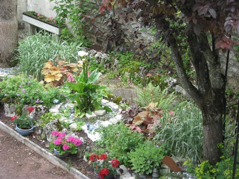 bonjour de mon jardin sous la chaleur Img_5834