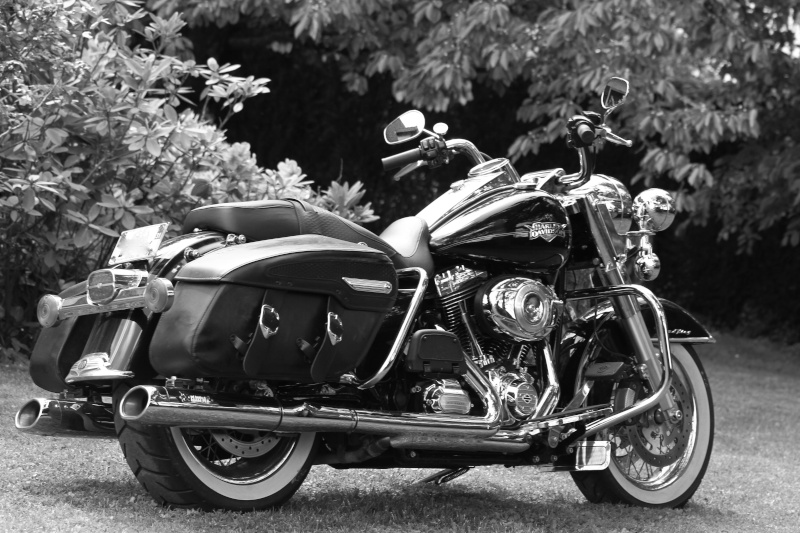 Road King uniquement, combien sur Passion-Harley  - Page 5 Rk_nb11