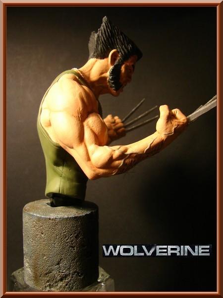 logan alias wolverine Dsc01827