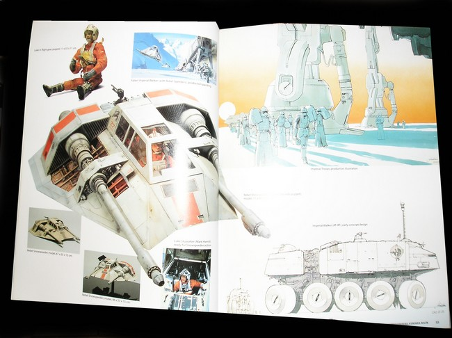 Collection n°04: le bazar de yakusa - Page 4 P1010017