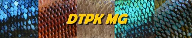 Lignée DTPK MG F2 Ecaill10
