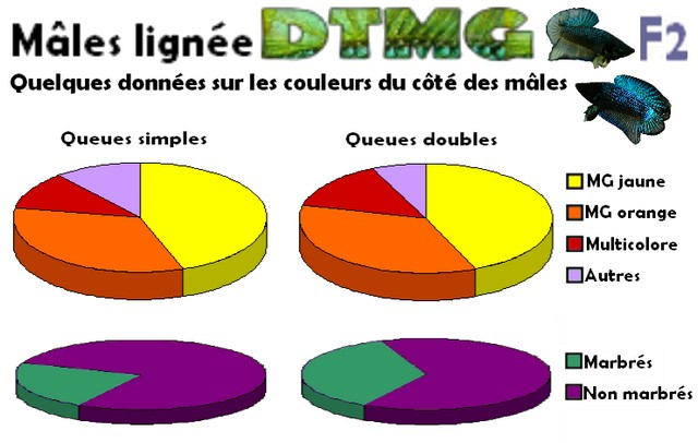 Lignée DTPK MG F2 Pource10