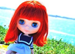 Sasha (Meowsy Wowsy) en Bretagne Dsc_1110