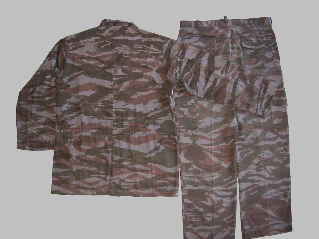 lizard pattern 100_1411