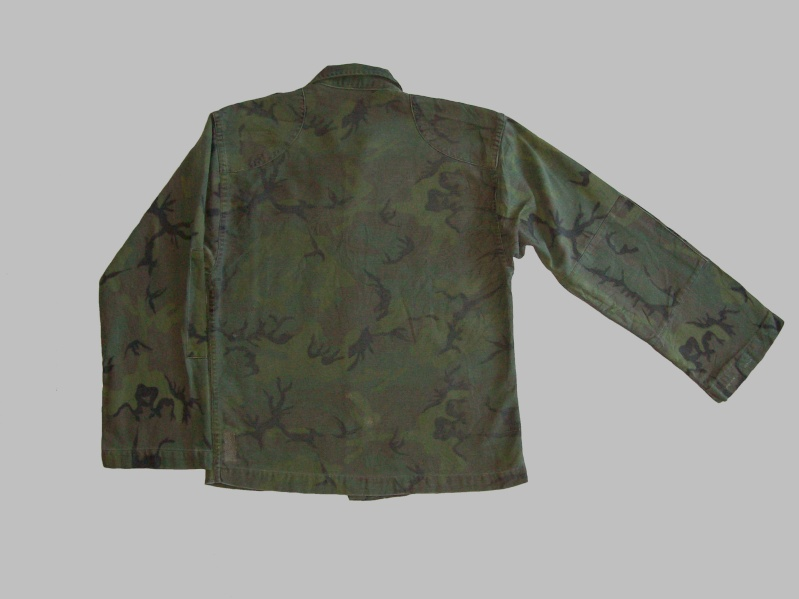 South Vietnam camouflage - Page 3 100_1720