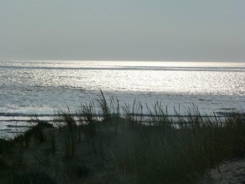 Le soleil était là !!!! Ocean_58