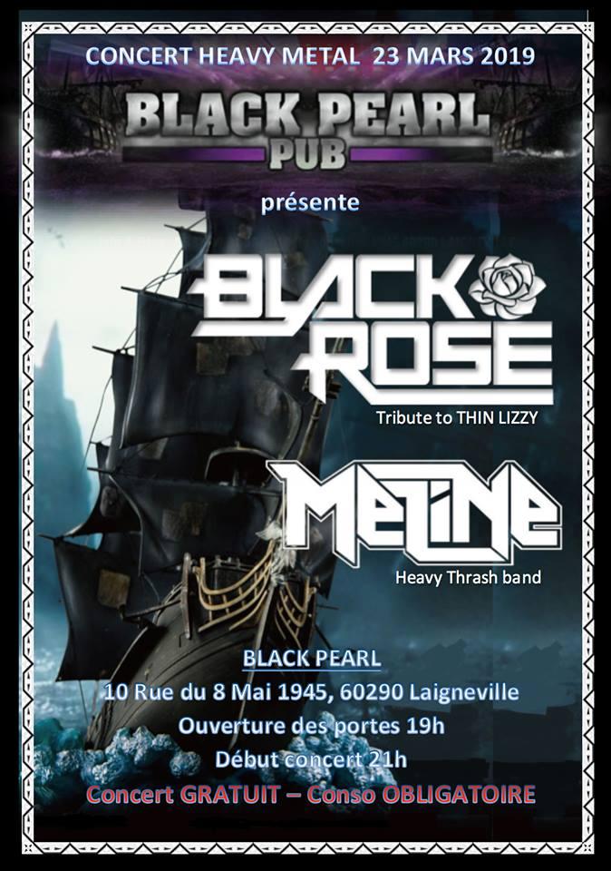 BLACK ROSE Black_11