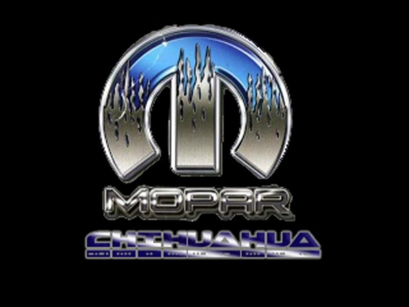 Club Mopar Chihuahua