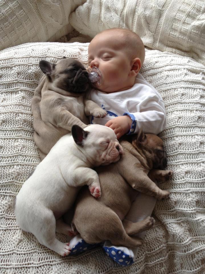 Les quadruplés dorment chut....... Mime-a13