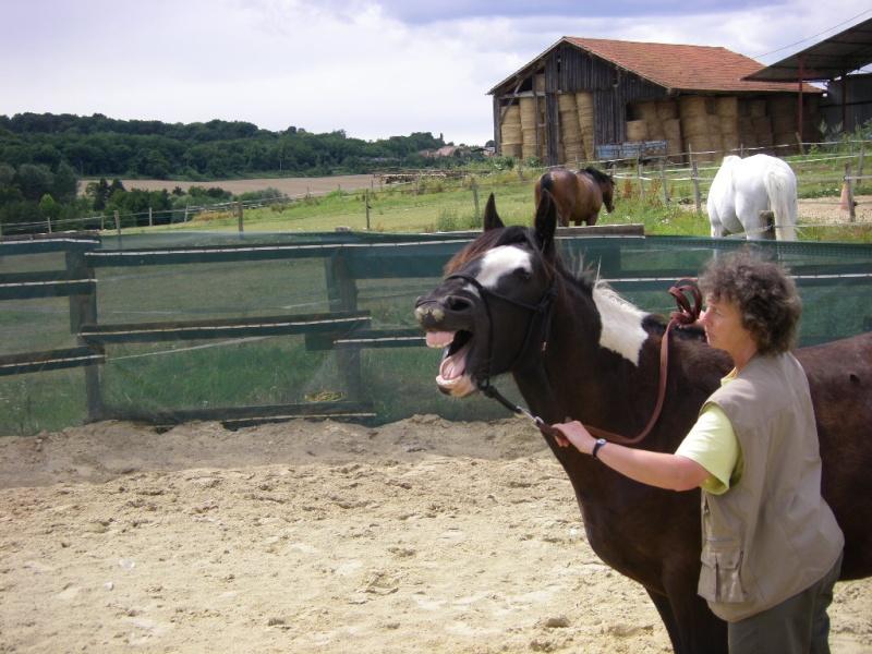 Saillant (Flo) et Damabiah (Emilie) rendent visite à Legend et Hermine ! Imgp4124