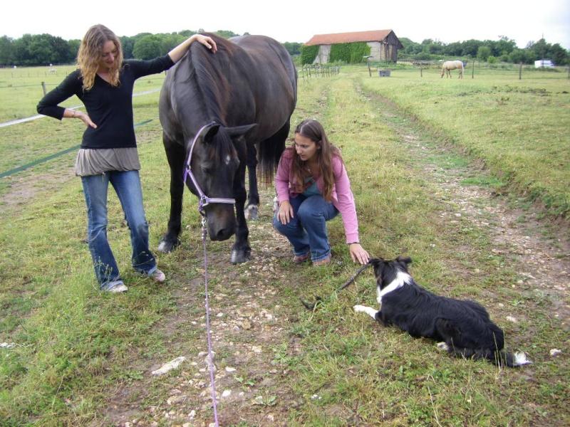 Saillant (Flo) et Damabiah (Emilie) rendent visite à Legend et Hermine ! Imgp4225