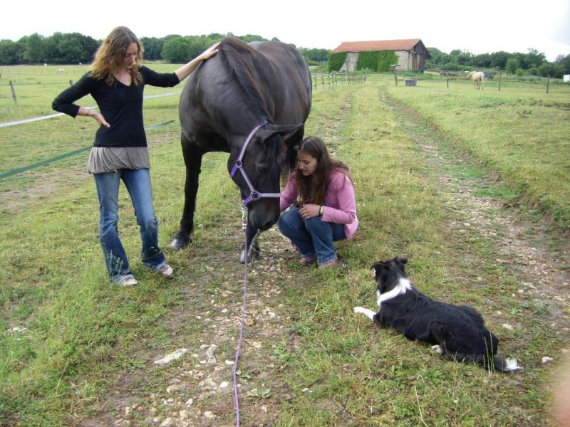 Saillant (Flo) et Damabiah (Emilie) rendent visite à Legend et Hermine ! Imgp4310