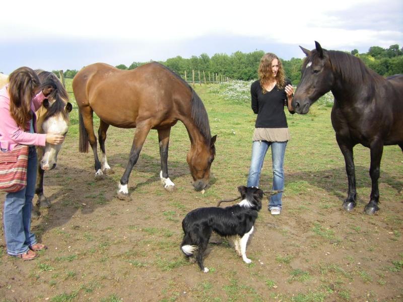 Saillant (Flo) et Damabiah (Emilie) rendent visite à Legend et Hermine ! Imgp4312
