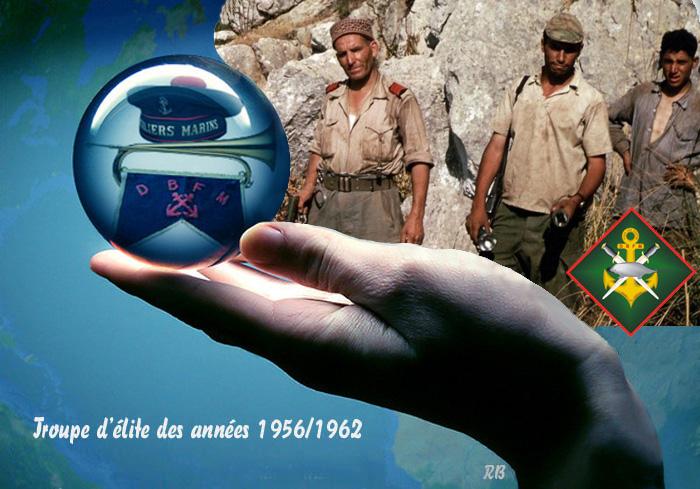 Commémoration de cinquante et un ans de fidélité et de solidarité entre Fusliers marins et Harkis 9_b_db11