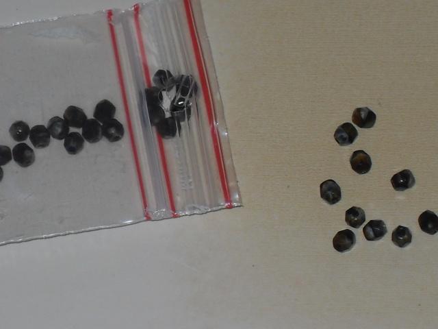 j'ai commencé à faire le tri dans mes perles lol Sdc11611