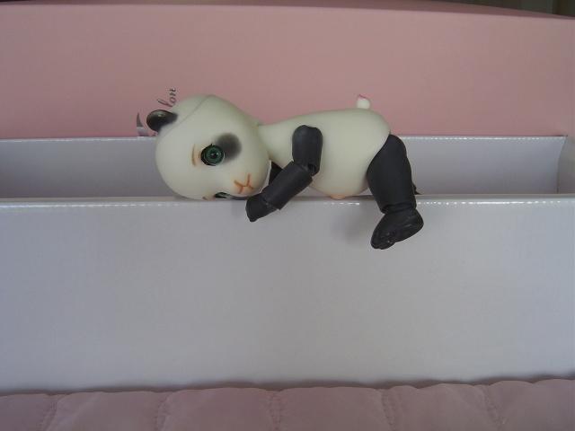 Tao & Mao (AE Panda & Pipos Ringo) Tao le retour (p.5) Dsc03524