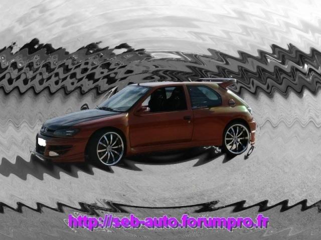306 MAXI CARBONE BY SEB AUTO - Page 3 306_ma27