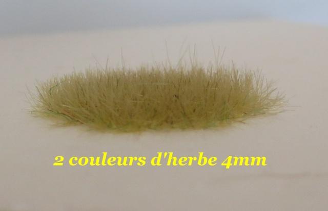 dresseur d'herbe Img_0010