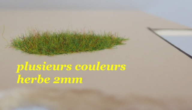 dresseur d'herbe Img_0011