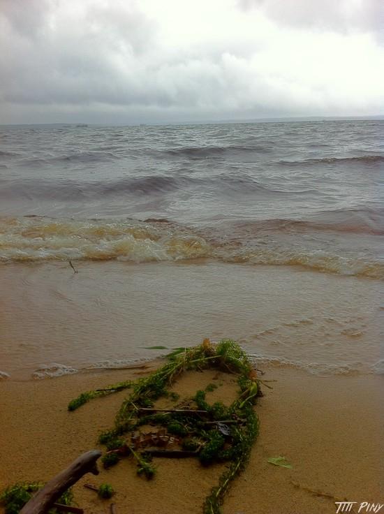 Titi et Piny à la mer... Part 1 C10