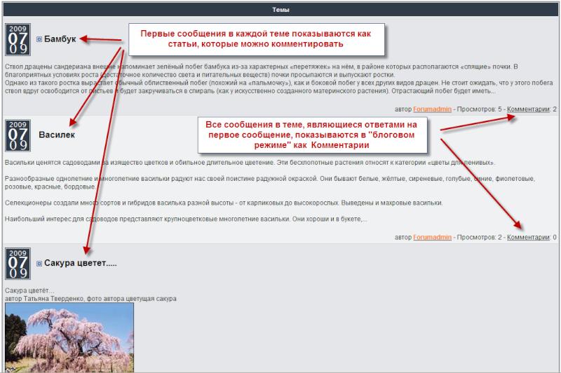 Блоги на вашем форуме: особый режим показа отдельных разделов форума Blog_f10