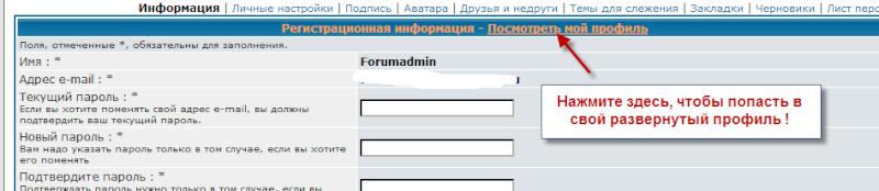 Профиль - развернутый профиль Provil11
