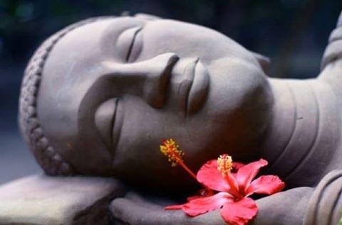 Zen & Meditation - Page 2 97071710