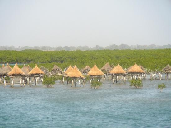 Sénégal 2012 Les_gr10