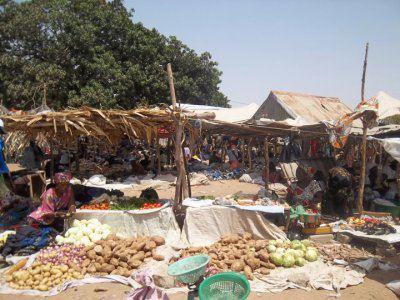Sénégal 2012 Marcha11