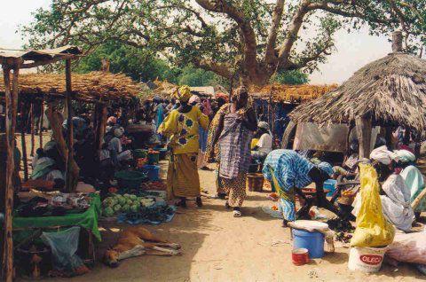 Sénégal 2012 Marcha12