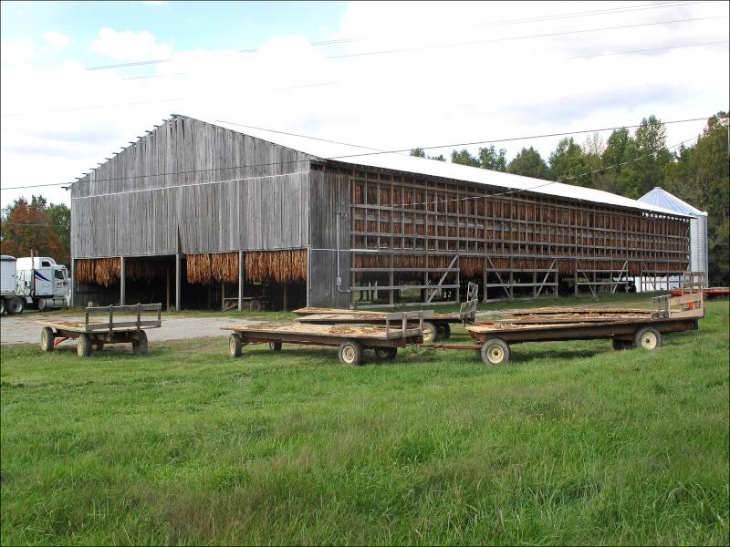 Etats-Unis : les granges à tabac (séchoirs), reliques d'une activité à l'abandon 80359410