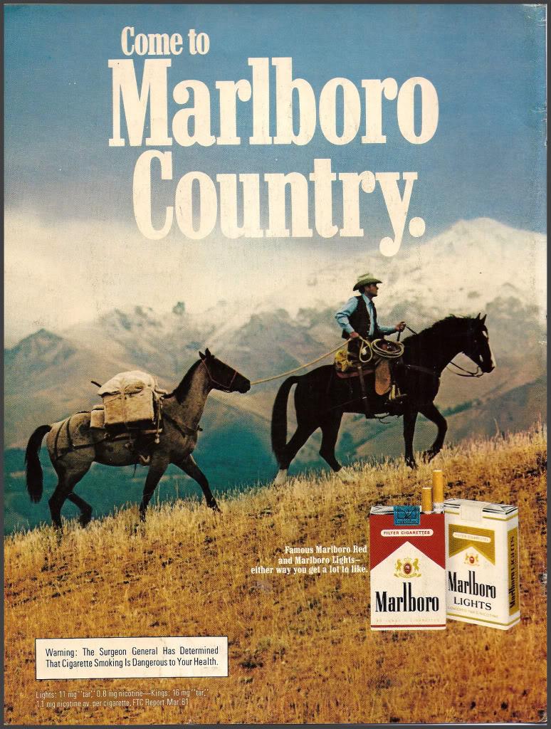 Etats-Unis : les granges à tabac (séchoirs), reliques d'une activité à l'abandon Image110