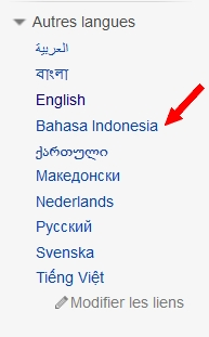 [Indonésie] - Un pays, 700 langues ! Langue10