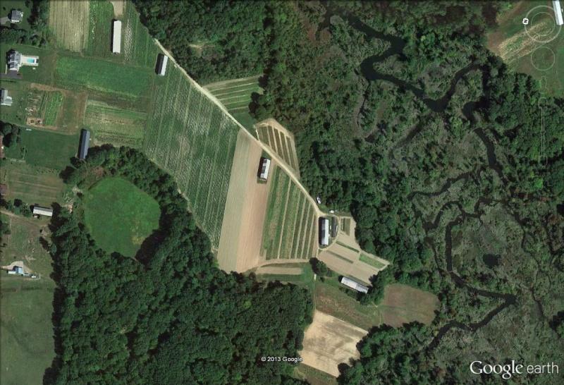 Etats-Unis : les granges à tabac (séchoirs), reliques d'une activité à l'abandon Tabac_11